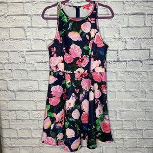 Betsey Johnson Rose Print A-Line Sleeveless Dress